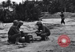 Image of Pigeon messengers Tunisia North Africa, 1943, second 7 stock footage video 65675033484