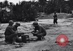 Image of Pigeon messengers Tunisia North Africa, 1943, second 8 stock footage video 65675033484