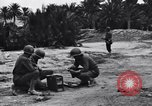 Image of Pigeon messengers Tunisia North Africa, 1943, second 11 stock footage video 65675033484