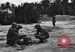 Image of Pigeon messengers Tunisia North Africa, 1943, second 12 stock footage video 65675033484