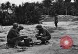 Image of Pigeon messengers Tunisia North Africa, 1943, second 13 stock footage video 65675033484