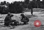 Image of Pigeon messengers Tunisia North Africa, 1943, second 14 stock footage video 65675033484