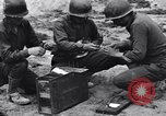Image of Pigeon messengers Tunisia North Africa, 1943, second 16 stock footage video 65675033484
