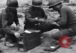 Image of Pigeon messengers Tunisia North Africa, 1943, second 17 stock footage video 65675033484