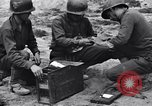 Image of Pigeon messengers Tunisia North Africa, 1943, second 19 stock footage video 65675033484
