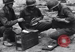 Image of Pigeon messengers Tunisia North Africa, 1943, second 25 stock footage video 65675033484