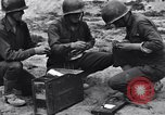 Image of Pigeon messengers Tunisia North Africa, 1943, second 26 stock footage video 65675033484