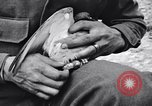 Image of Pigeon messengers Tunisia North Africa, 1943, second 28 stock footage video 65675033484