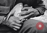 Image of Pigeon messengers Tunisia North Africa, 1943, second 29 stock footage video 65675033484