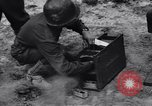 Image of Pigeon messengers Tunisia North Africa, 1943, second 34 stock footage video 65675033484