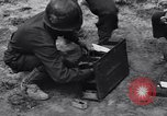 Image of Pigeon messengers Tunisia North Africa, 1943, second 35 stock footage video 65675033484