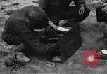 Image of Pigeon messengers Tunisia North Africa, 1943, second 36 stock footage video 65675033484