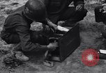 Image of Pigeon messengers Tunisia North Africa, 1943, second 37 stock footage video 65675033484