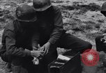 Image of Pigeon messengers Tunisia North Africa, 1943, second 39 stock footage video 65675033484