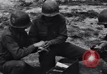 Image of Pigeon messengers Tunisia North Africa, 1943, second 40 stock footage video 65675033484