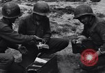 Image of Pigeon messengers Tunisia North Africa, 1943, second 42 stock footage video 65675033484
