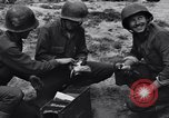 Image of Pigeon messengers Tunisia North Africa, 1943, second 43 stock footage video 65675033484