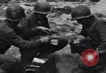 Image of Pigeon messengers Tunisia North Africa, 1943, second 44 stock footage video 65675033484