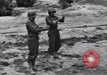Image of Pigeon messengers Tunisia North Africa, 1943, second 46 stock footage video 65675033484