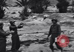 Image of Pigeon messengers Tunisia North Africa, 1943, second 47 stock footage video 65675033484