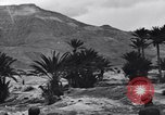 Image of Pigeon messengers Tunisia North Africa, 1943, second 52 stock footage video 65675033484