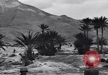 Image of Pigeon messengers Tunisia North Africa, 1943, second 55 stock footage video 65675033484