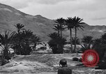 Image of Pigeon messengers Tunisia North Africa, 1943, second 56 stock footage video 65675033484