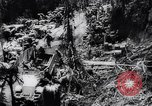Image of 37th Division Bougainville Island Papua New Guinea, 1944, second 57 stock footage video 65675033606