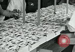 Image of chocolate factory United States USA, 1921, second 34 stock footage video 65675035220