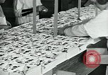 Image of chocolate factory United States USA, 1921, second 35 stock footage video 65675035220
