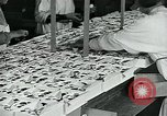 Image of chocolate factory United States USA, 1921, second 37 stock footage video 65675035220