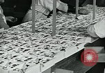 Image of chocolate factory United States USA, 1921, second 39 stock footage video 65675035220