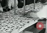 Image of chocolate factory United States USA, 1921, second 43 stock footage video 65675035220