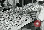 Image of chocolate factory United States USA, 1921, second 48 stock footage video 65675035220
