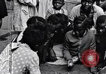 Image of 1960s African American children Long Island New York USA, 1960, second 26 stock footage video 65675035581