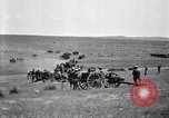 Image of U.S. Army cavalry and artillery units on maneuvers in Marfa, Texas Marfa Texas USA, 1923, second 51 stock footage video 65675036446