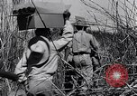 Image of Allied prisoners rescued from Cabanatuan prison camp Philippines, 1945, second 20 stock footage video 65675037801