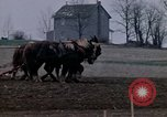 Image of Farmer plowing field New York United States USA, 1970, second 24 stock footage video 65675040534