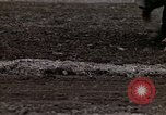 Image of Farmer plowing field New York United States USA, 1970, second 47 stock footage video 65675040534