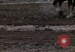 Image of Farmer plowing field New York United States USA, 1970, second 51 stock footage video 65675040534