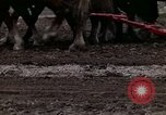 Image of Farmer plowing field New York United States USA, 1970, second 54 stock footage video 65675040534