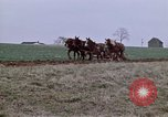 Image of Horse drawn plow New York United States USA, 1970, second 7 stock footage video 65675040541