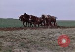 Image of Horse drawn plow New York United States USA, 1970, second 14 stock footage video 65675040541