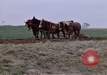 Image of Horse drawn plow New York United States USA, 1970, second 15 stock footage video 65675040541