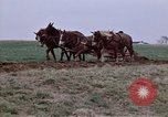 Image of Horse drawn plow New York United States USA, 1970, second 17 stock footage video 65675040541