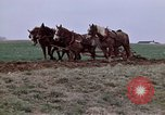 Image of Horse drawn plow New York United States USA, 1970, second 18 stock footage video 65675040541