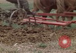 Image of Horse drawn plow New York United States USA, 1970, second 31 stock footage video 65675040541