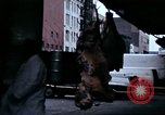 Image of Meat packing district New York City USA, 1970, second 15 stock footage video 65675040544