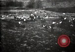 Image of Spanish American War Cuba, 1898, second 39 stock footage video 65675040570