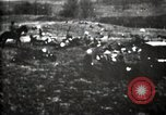 Image of Spanish American War Cuba, 1898, second 45 stock footage video 65675040570